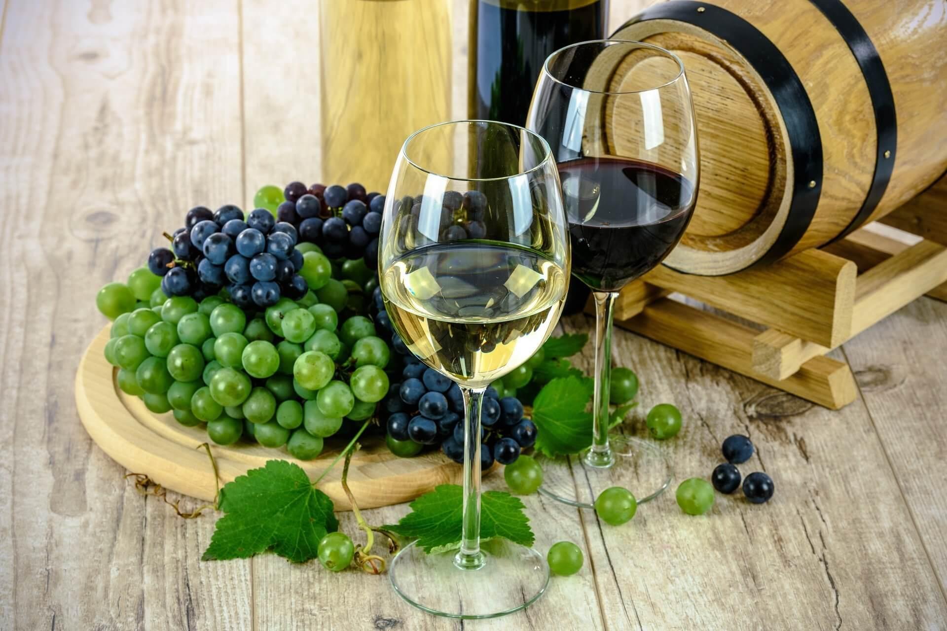 Taste unique Greek wines